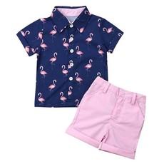 Baby Boy Flamingo Short Sleeve Shirts Pants Summer Clothes Set