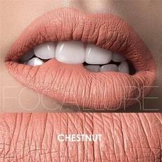 Focallure Matte Liquid Lipstick - Chestnut