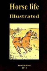 Horse life Illustrated