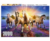 RGS Group Horses In The Lavender Field 1000 piece jigsaw puzzle