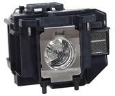 Duracell Plus Power Alkaline AA Batteries - 20 Pack