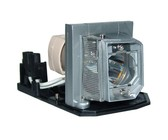 Optoma DM161 Projector Lamp - Philips Lamp In Housing From APOG