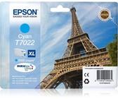 Genuine Epson T7607 Light Black 25.9ml Ink Cartridge (C13T76074010)